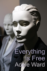 Book Cover for Everything Is Free